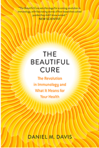 Cover image, The Beautiful Cure